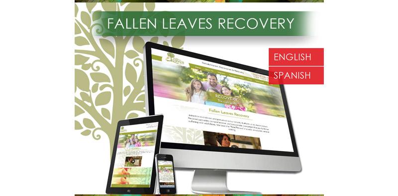 Bilingual Website Design and Development Picture Thumbnail