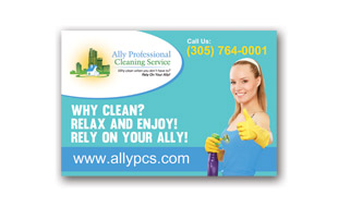 Car Magnet Design - Ally Professional Cleaning Service Portfolio