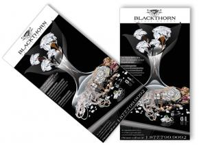 Blackthorn Estate Buyers Portfolio