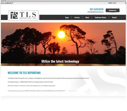 TLS Reporting INC Portfolio