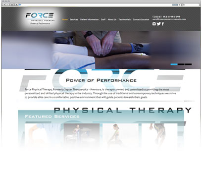 Force Physical Therapy Portfolio