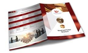 Phoenix Global International Brochure Design Portfolio