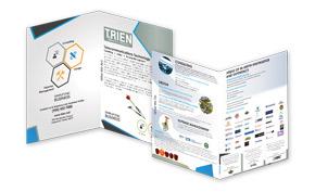 Trien & Associates Portfolio